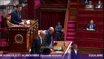 Nouvelle lecture du projet de loi agriculture et alimentation à l'Assemblée nationale : le discours de Stéphane Travert
