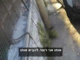 Palestinians harassed by Jewish settler in Hebron cage (p2)