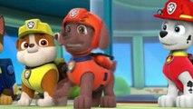 ♥♥ PAW Patrol (S01E22b) - Pups Save Ryder (Full Episode