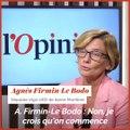 Agnès Firmin-Le Bodo (Agir-UDI) : «Nous ne sommes pas inaudibles, nous avons trouvé notre équilibre»