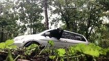 Watch: A bear in North Carolina breaks through van window to escape.