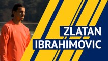 Zlatan Ibrahimovic scores 500th career goal - player profile