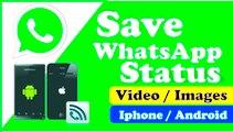 Download Whatsapp Status Video Without App - VideoTaleem.Com