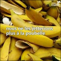 Découvrez les diverses utilisations de la peau de banane. Vous allez adorer !