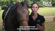 """L'équitation éthologique, """"une façon plus douce et plus juste de travailler le cheval"""""""