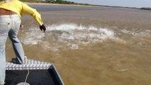 On appelle ça une pêche miraculeuse... Milliers de poissons