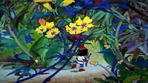 Dibujos Animados Latino Peliculas Completas en Español | Dibujos Animados en Español El Pajaro Loco