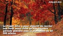30 000 arbres vont être plantés dans le Tarn pour recréer une forêt endémique