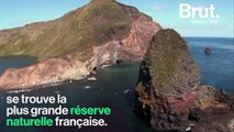 Aucun habitant, aucun arbre et quasi inaccessible… Bienvenue dans la plus grande réserve naturelle française