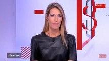 Sénat 360 - Edition spéciale : audition d'Alexandre Benalla (19/09/2018)