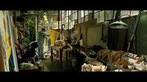 """Tráiler película """"Mi obra maestra"""", dirigida por Gastón Duprat y protagonizada por Guillermo Francella, Luis Brandoni y Raúl Arévalo"""