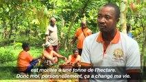 La Côte d'Ivoire se convertit au commerce équitable de cacao