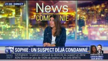 Disparition de Sophie Le Tan: le suspect déjà jugé pour la disparition d'une autre jeune femme (1/2)