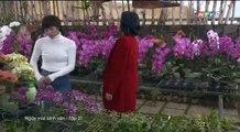 Ngày Mai Bình Yên Tập 31 - (Phim Việt Nam HTV9) - Ngay Mai Binh Yen Tap 31 - Ngay Mai Binh Yen Tap 32
