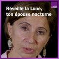 Un monologue de l'Envol des cigognes par Ariane Ascaride