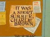 It Was A Short Summer, Charlie Brown (1969)