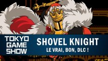 SHOVEL KNIGHT : Le vrai, bon, DLC ! | GAMEPLAY TGS 2018