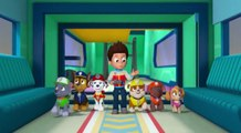 Paw Patrol - S 2 E 6 - The New Pup