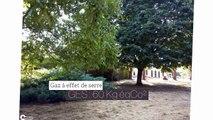 A louer - Maison/villa - SAUVIGNY LES BOIS (58160) - 15 pièces - 290m²
