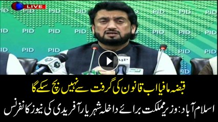 The occupation mafia will no longer be able to escape from the grip of the law: Shehryar Afridi