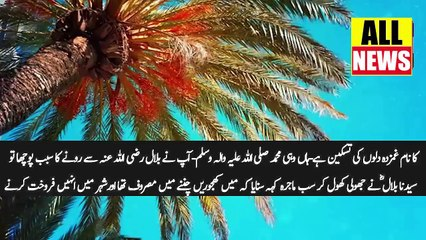 Ary News Headlines | Ajwa Khajur Baqi Khajoro Ki Sardar Kesy Bani