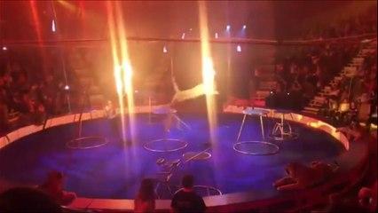 Un tigre épuisé convulse et perd connaissance en plein spectacle dans un cirque Russe