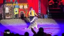 TILT - 28/09/2018 - Spécial Festival International du Cirque - Partie 2