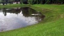 Ce lac est en train de se vider par trois trous. Impressionnant