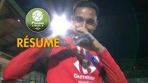 Red Star  FC - Grenoble Foot 38 (2-3)  - Résumé - (RED-GF38) / 2018-19