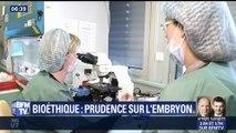 Bioéthique: prudence sur l'embryon