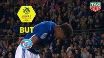 But Lebo MOTHIBA (81ème) / RC Strasbourg Alsace - Dijon FCO - (3-0) - (RCSA-DFCO) / 2018-19