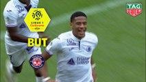 But Jean-Clair TODIBO (88ème) / Stade Rennais FC - Toulouse FC - (1-1) - (SRFC-TFC) / 2018-19