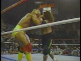 Hulk Hogan vs. Sika (SNME 12)