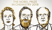 Nobel Kimya Ödülü Frances H. Arnold, George P. Smith ve Gregory P. Winter'a Verildi