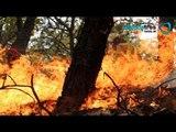 Continúan los incendios en Michoacán, se han reportado 500 incendios.