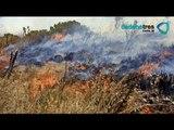 Incendios en San Miguelito, San Luis Potosí siguen activos