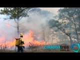 Reportan 4 incendios activos en Veracruz; contabilizan 143 siniestros en el país