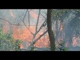 Altas temperaturas provocan que aumente los incendios forestales en Veracruz