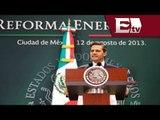 Reforma energética tendrá resultados tangibles en 5 años  / Rodrigo Pacheco