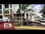 Fuertes vientos dejan árboles y espectaculares caídos / Ricardo Salas