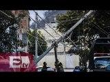 Bomberos retiran árboles y espectaculares peligrosos en CDMX / Ricardo Salas