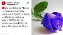 La fille de Marine Le Pen agressée lors d'une bagarre à Nanterre.