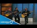Show en vivo de Los hooligans en No lo cuentes / Live show Los hooligans