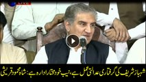 NAB is an independent institution, Shehbaz Sharif was arrested after investigation, says Shah Mehmood Qureshi