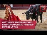 Partido Verde va contra la prohibición de corridas de toros en la CDMX