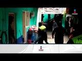 Detienen a 74 personas en Naucalpan, encuentran drogas y artículos robados | Noticias con Zea