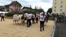 Foire de Rumilly 2018 : chevaux et vaches rois de la fête
