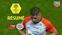 EA Guingamp - Montpellier Hérault SC (1-1)  - Résumé - (EAG-MHSC) / 2018-19