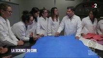 Une autre école - Ecole des Ingénieurs du cuir à Lyon