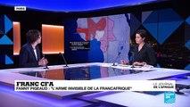 """Le Franc CFA """" L''arme invisible de la Françafrique"""""""